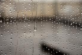 images (3)rain